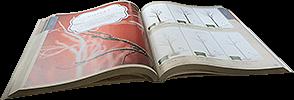 Request Catalogue